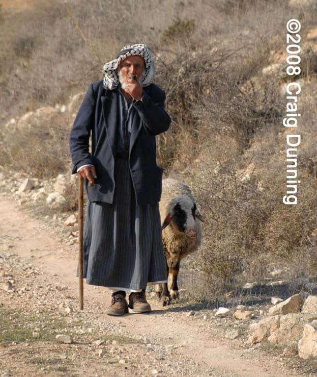 20081213-shepherd-copy