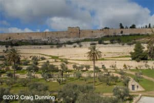 View of the Eastern Gate and Temple Mount from the Mt. of Olives.