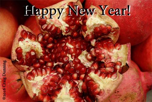 Pomegranate ©2016 Craig Dunning